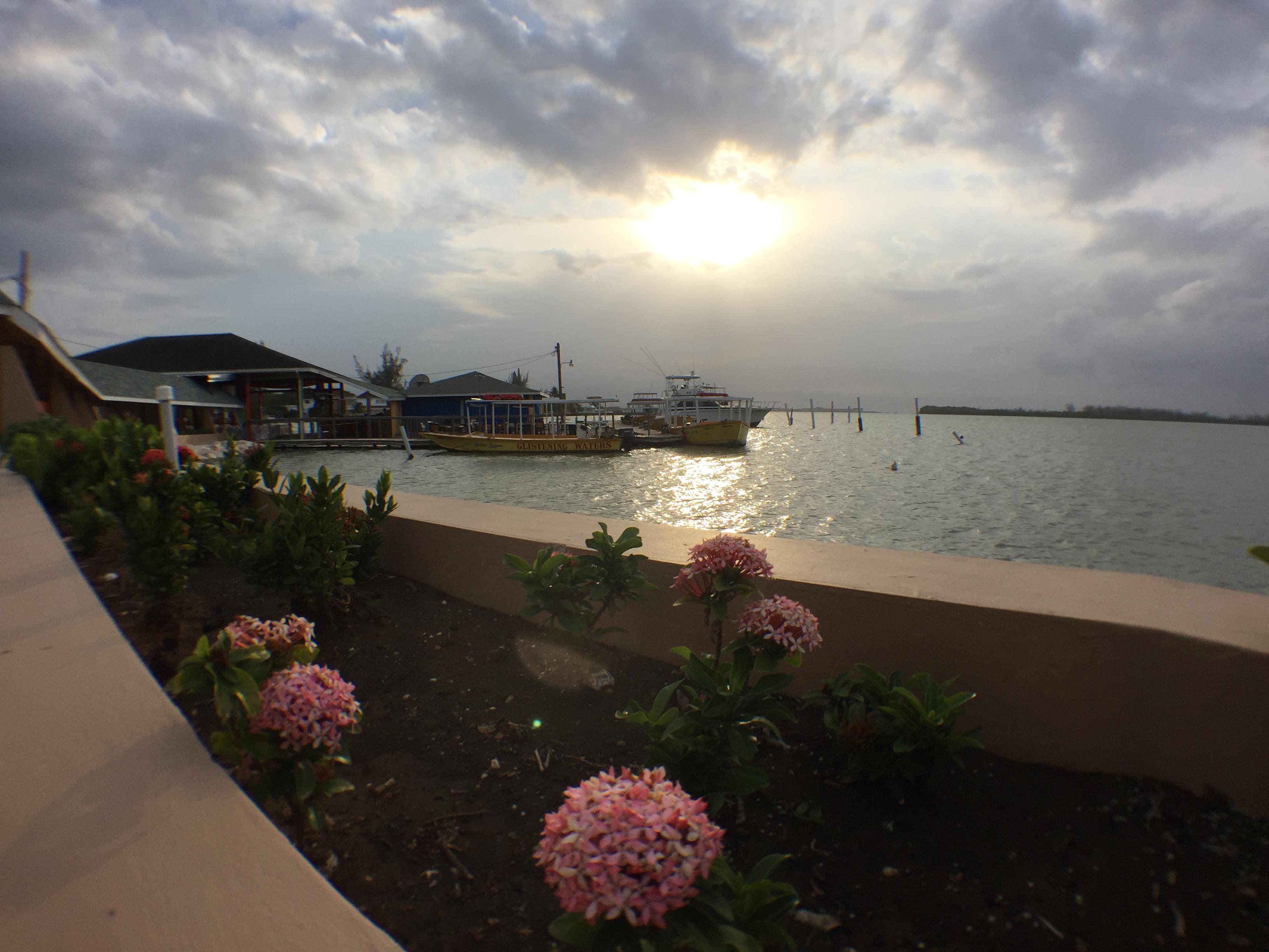 Landscaped Walkway & Marina