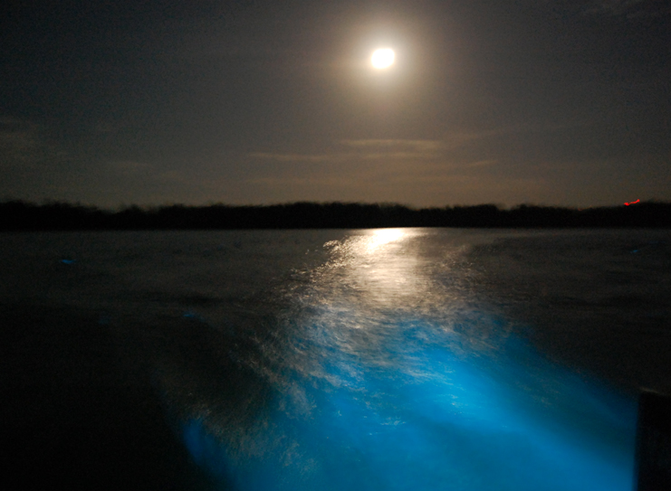 Moon Light And Glow