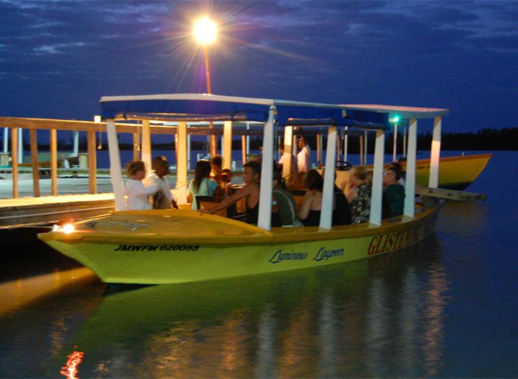 Tour Boats Arriving