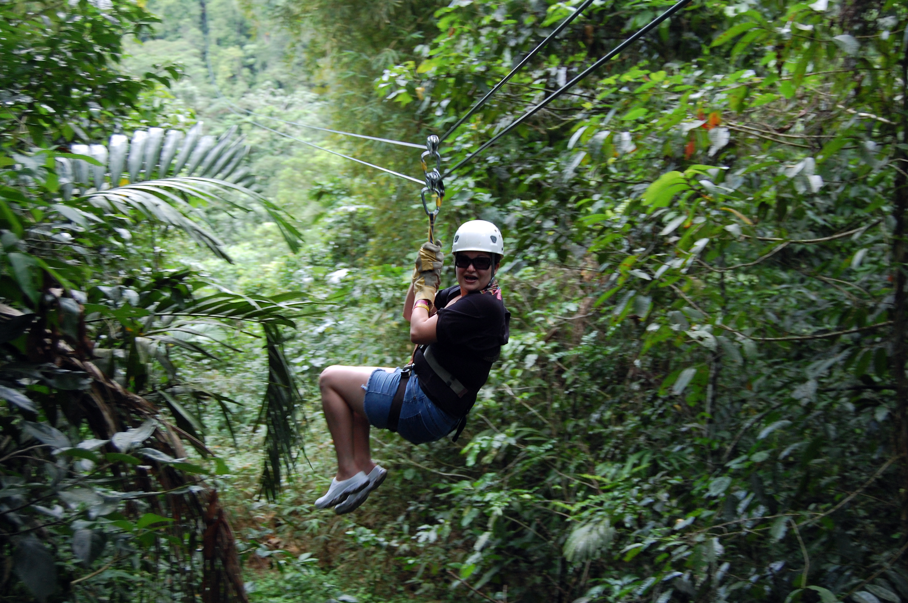 Zip Lining Adventure in Jamaica